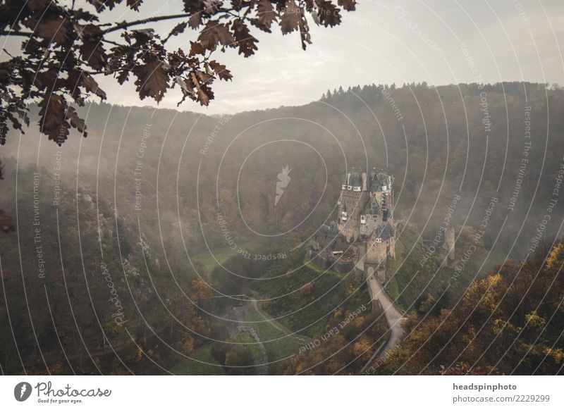 Castle Eltz surrounded by fog & forest in autumn Hiking Nature Landscape Clouds Autumn Wind Fog Forest Mountain Germany Dark Creepy Cold Sadness Fear