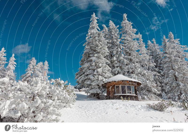 Sky Nature White Tree Blue Beautiful Winter Calm Cold Snow Mountain Landscape Large Alps Fir tree Hut
