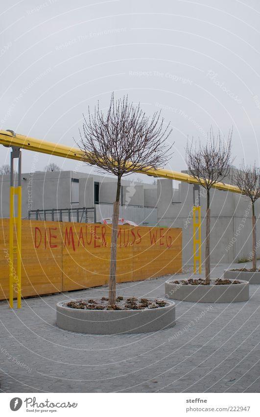 Tree Winter House (Residential Structure) Yellow Wall (building) Autumn Gray Wall (barrier) Graffiti Concrete Gloomy Munich Figure of speech Daub Gray clouds