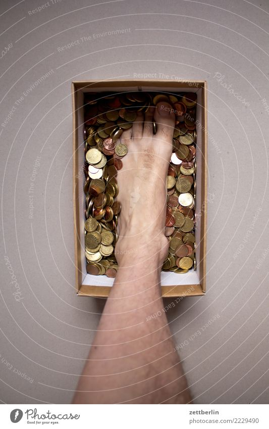 Human being Legs Feet Copy Space Stand Money Luxury Toes Cardboard Crate Save Carton Coin Money box Surplus Strongbox