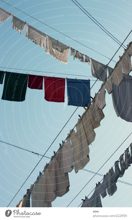 washing day Clothing T-shirt Shirt Stockings Underwear Towel Terry cloth Fragrance Cleaning Wet Blue Washing Laundry Clothesline Clothes peg Dry Suspended