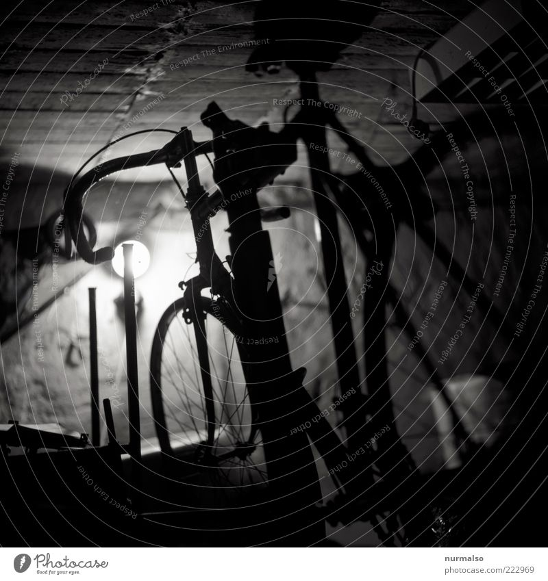 cycling break Lifestyle Leisure and hobbies Racing cycle Technology Bicycle Old Esthetic Authentic Moody Mothballed Garage Parking Subdued colour