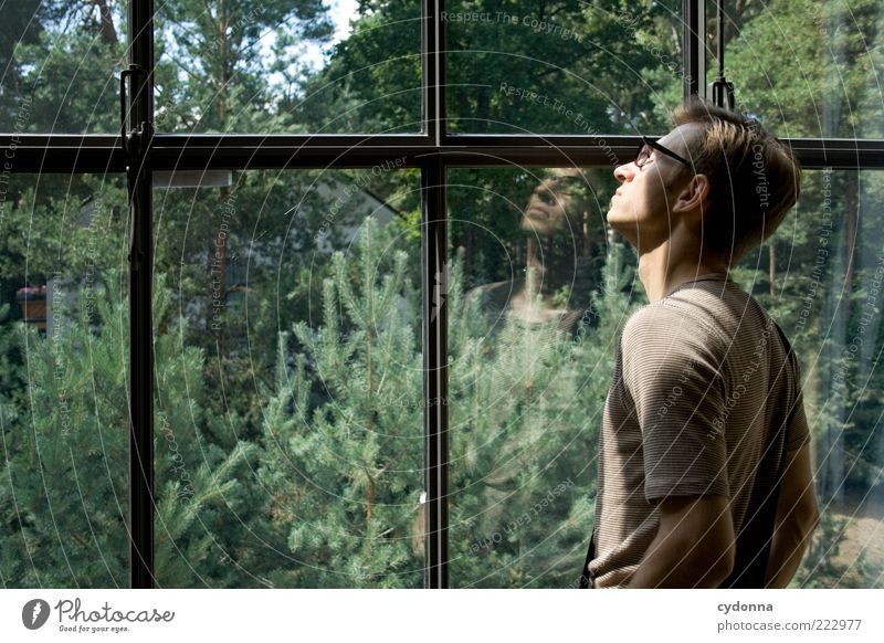 Human being Nature Youth (Young adults) Sun Calm Relaxation Life Window Freedom Emotions Environment Garden Dream Adults Contentment Time