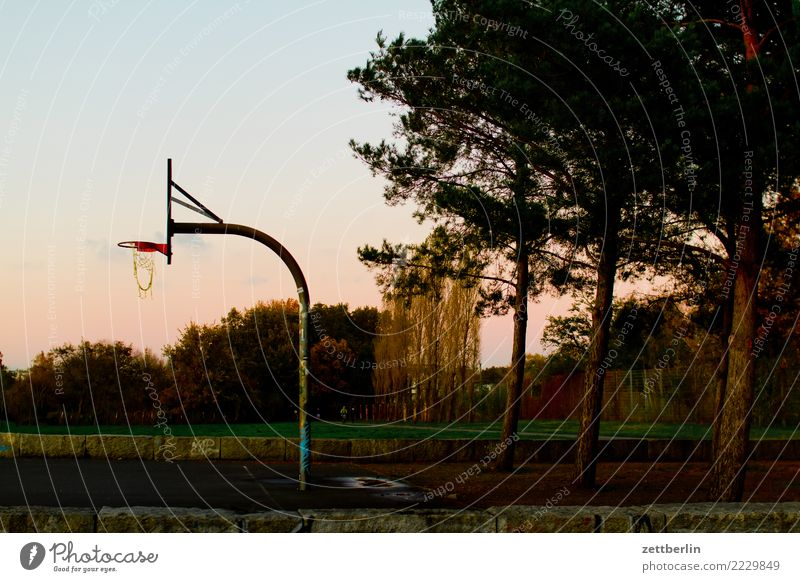 Basketball court in Baluschekpark Ball sports baluschekpark Basketball basket Berlin Twilight Sky Heaven Park Schöneberg Playing Sports Autumn Evening