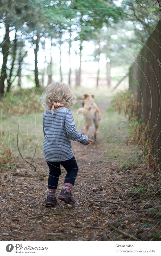 stroll Human being Child Toddler Girl 1 Animal Pet Dog Joy Walk the dog To go for a walk Colour photo Exterior shot Looking away Rear view Full-length Blonde