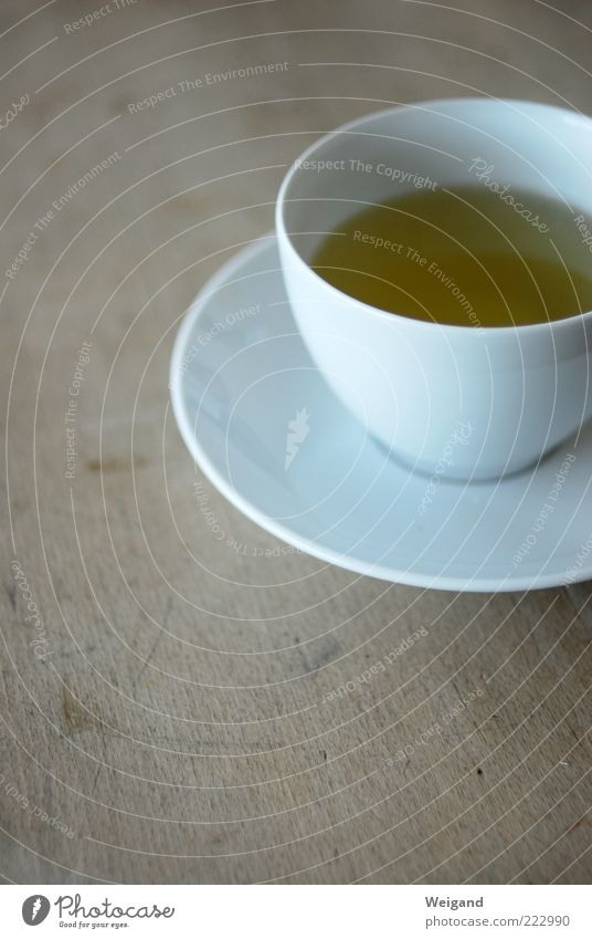 green in white Food Nutrition Organic produce Beverage Drinking Tea Cup Brown White Esthetic Contentment Uniqueness Afternoon Teatime Pure Sparse Green tea