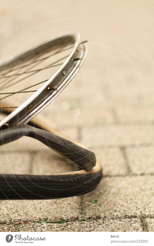 rim circle Bicycle Broken Brown Safety Protection Dangerous furious Revenge Aggression Force End Frustration Transience Insurance Destruction damages Accident
