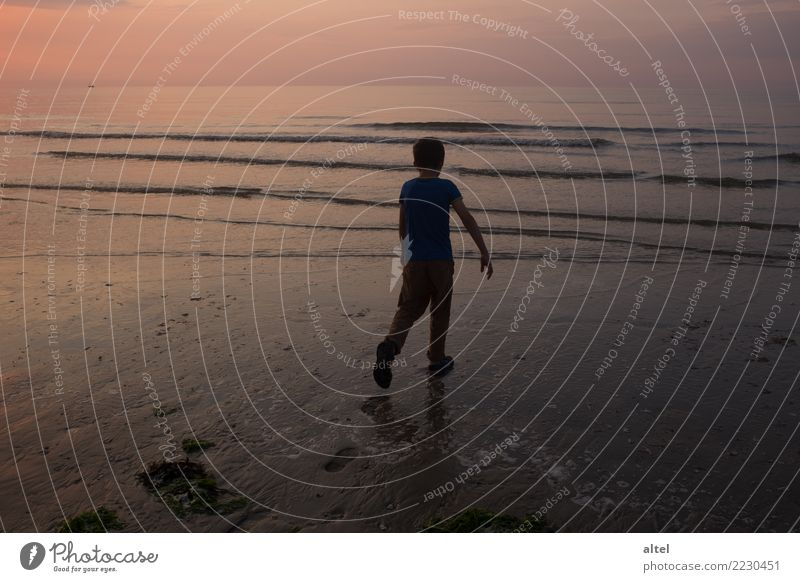 Your tracks in the sand Relaxation Calm Vacation & Travel Tourism Summer Summer vacation Beach Ocean Human being Child Infancy Nature Landscape Sunrise Sunset