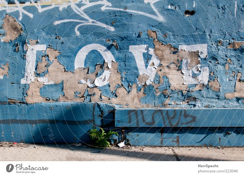 Old Blue White Love Wall (building) Graffiti Gray Stone Wall (barrier) Dye Facade Concrete Characters Sidewalk Trashy Weathered