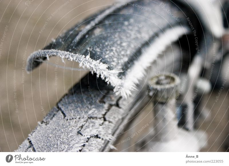Winter Cold Ice Bicycle Frost Wheel Tire tread Tire Thorny Section of image Partially visible Ice crystal Hoar frost Climate Blur Guard