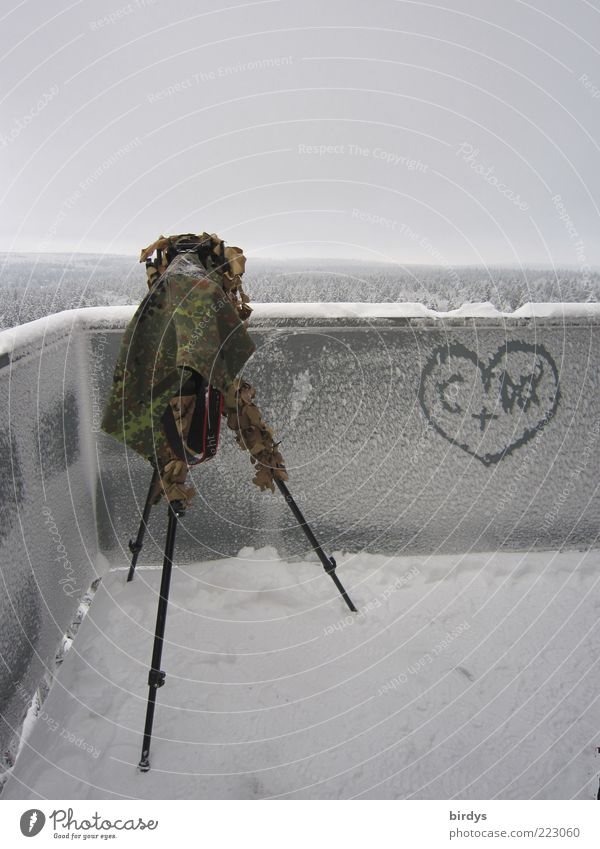 Love vs. frost Video camera Camera Nature Landscape Winter Snow Forest Tower Observe Tall Cold Anticipation Passion Romance Effort Far-off places Infatuation