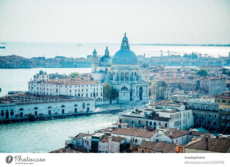 View of Venice Vacation & Travel Tourism Trip Adventure Far-off places Freedom Sightseeing City trip Cruise Italy Europe Town Port City