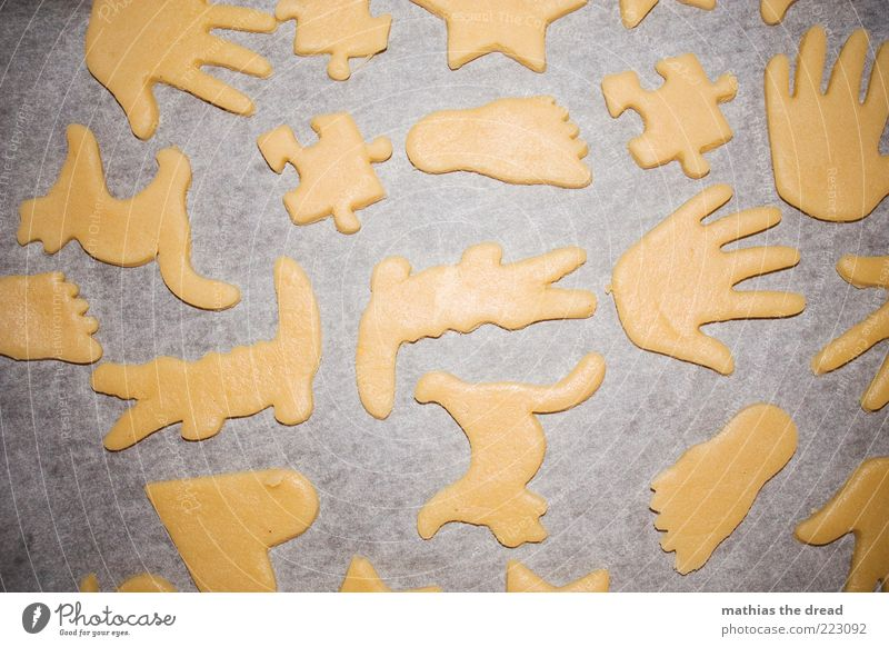 biscuits Food Dough Baked goods Cookie Structures and shapes Hand Puzzle Feet Cat Crocodile Preparation Christmas biscuit pre-Christmas period Colour photo
