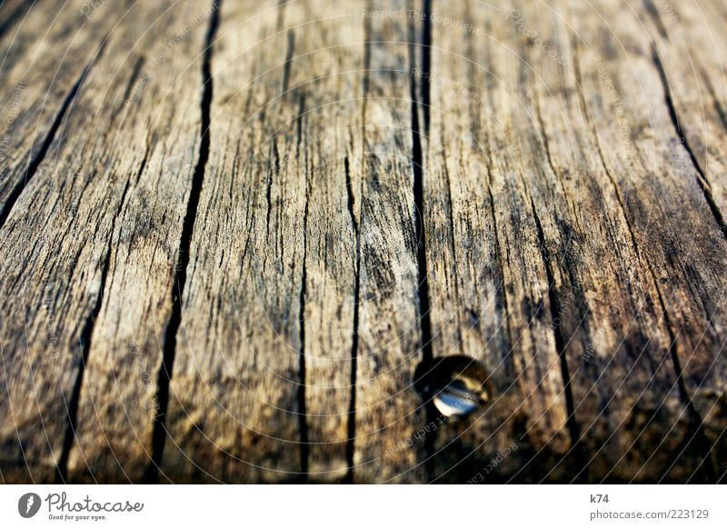 old wood with screw Wood Steel Old Dirty Natural Dry Brown Authentic plank Wooden board Screw Firm Connectedness Fix Weathered Crack & Rip & Tear Colour photo