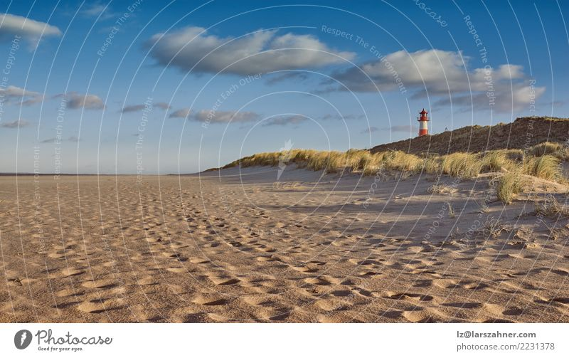 Deserted beach with lighthouse in evening light Sky Landscape Ocean Beach Coast Grass Building Lake Island Historic Dune Lighthouse Horizontal North Scene