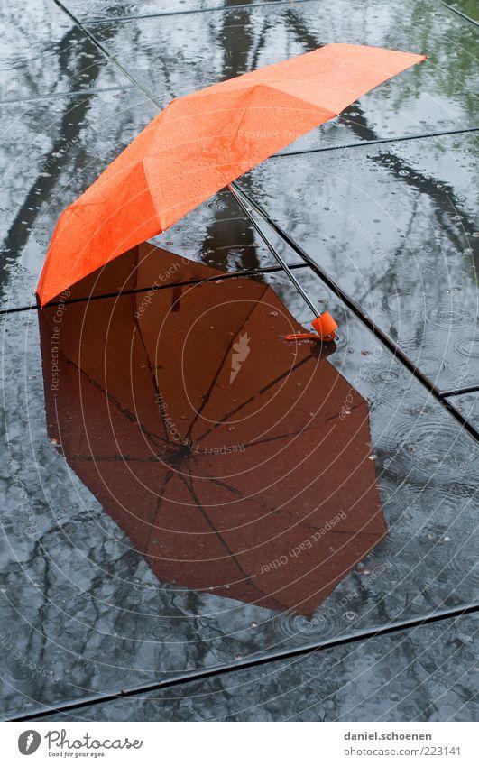 Rain Orange Weather Wet Lie Open Climate Ground Umbrella Damp Umbrellas & Shades Bad weather Climate change Light Reflection
