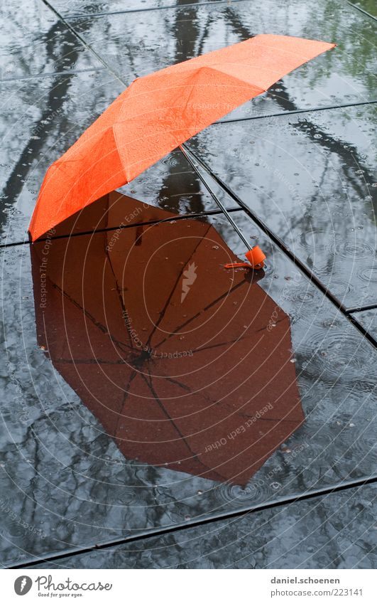 the weather forecast for today Climate Climate change Weather Bad weather Rain Umbrellas & Shades Reflection Orange Ground Lie Open Deserted Wet Damp 1