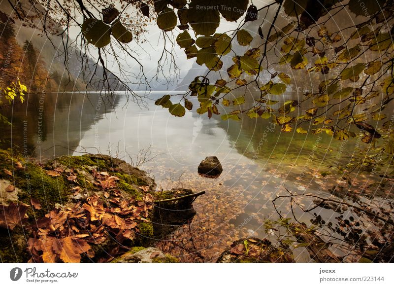 Sky Nature Water Tree Green Vacation & Travel Leaf Calm Relaxation Autumn Mountain Landscape Stone Brown Weather Wet
