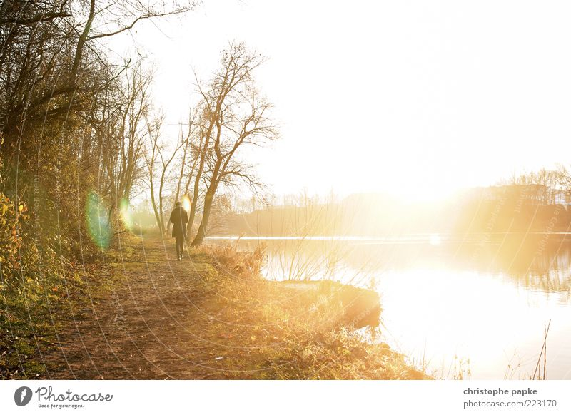 Light explosion at the lake Leisure and hobbies Human being 1 Nature Landscape Autumn Lakeside Relaxation Going Illuminate Infinity Bright Dream