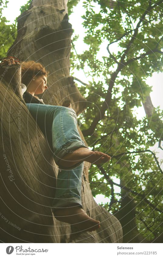 just let it hang Trip Freedom Human being Legs Feet Environment Nature Summer Autumn Climate Weather Plant Tree Forest Jeans Wood Observe Touch Think Relaxation