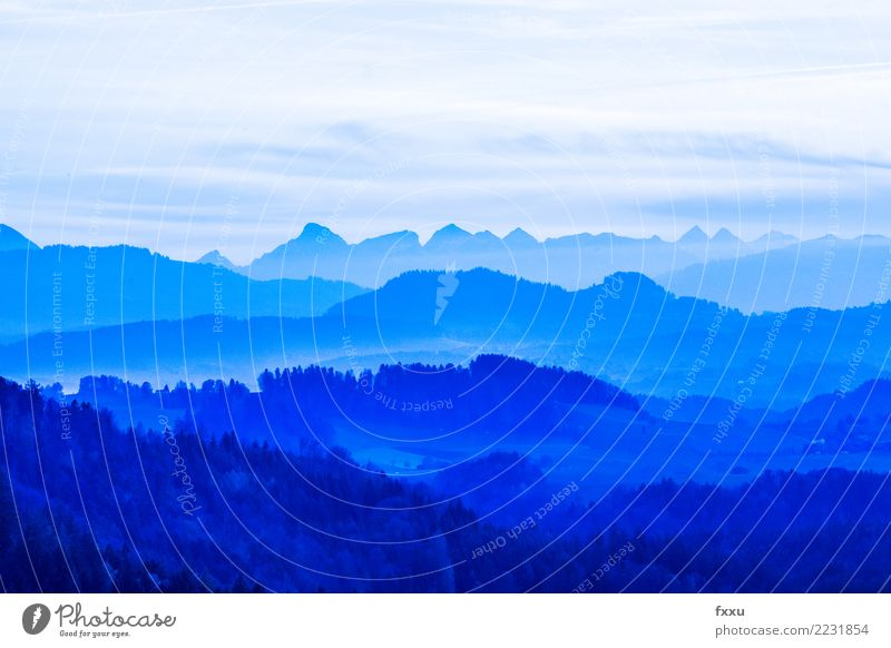 View Mountain Landscape Blue Panorama (View) Sky Alps Mountain range Bernese Oberland Canton Bern Switzerland Far-off places Vantage point Nature Hiking Alpine