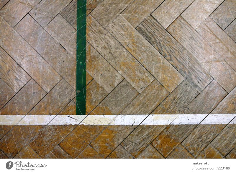 old parquet in the gymnasium Sports Sporting Complex Past School building School sport Wooden floor Parquet floor Pattern Line Volleyball court Floor covering