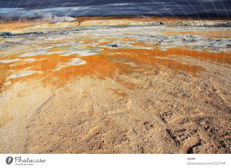 warm up Environment Nature Landscape Climate Volcano Exceptional Hot Iceland Orange geothermal area Hot springs Mývatn Source Steam Sulphur Colour photo