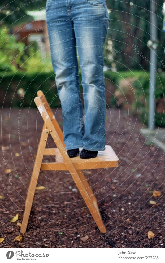 Woman Human being Wood Garden Adults Legs Feet Contentment Large Stand Bushes Chair Jeans Curiosity Pants Joie de vivre (Vitality)