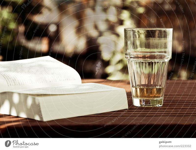 Relaxation Life Contentment Leisure and hobbies Glass Book Table Beverage Joie de vivre (Vitality) To enjoy Page Multicoloured Summery Emotions Furniture