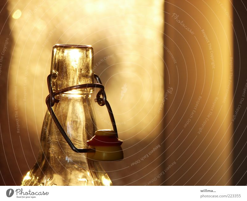 Yellow Gold Glass Beverage Empty Open Beer Bottle Alcoholic drinks Thirst Visual spectacle Bottle of beer Addiction Neck of a bottle Lemonade Nutrition