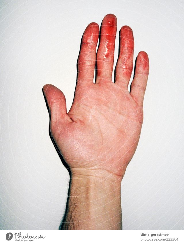 Bloody fingers. Hand Arm Lifestyle Passion Human being Flash photo Emotions