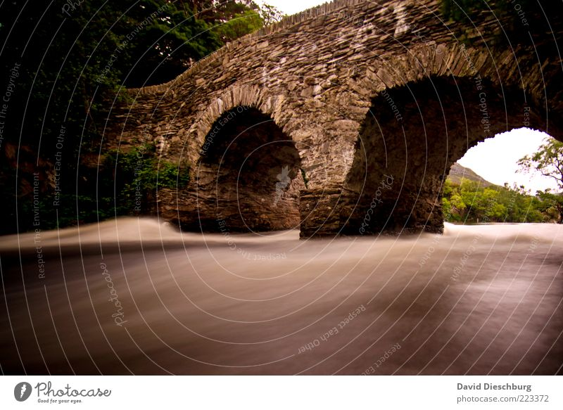 Irish bridge Water Summer River bank Brown Bridge Stone Old Flow Current Ireland Historic Dynamics Medieval times Colour photo Exterior shot Dawn Day Evening