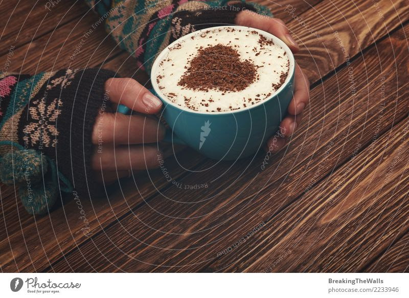 Woman hands hugging big cup of cappuccino coffee Human being Youth (Young adults) Young woman Blue Hand Relaxation Calm Winter Adults Warmth Love Feminine Brown