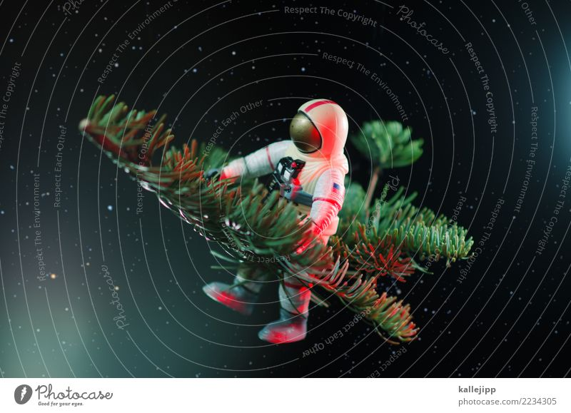jewel in the night Feasts & Celebrations Christmas & Advent New Year's Eve Profession Human being 1 Flying Astronaut Fir branch Universe Delivery person Card