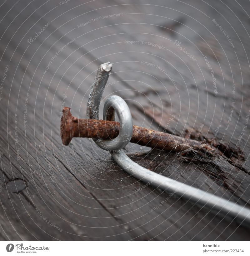 entangled Wood Metal Brown Nail Rust Curved Attach Weathered Colour photo Exterior shot Close-up Detail Deserted Wrapped around Old Hold Wire Bend Tilt Day
