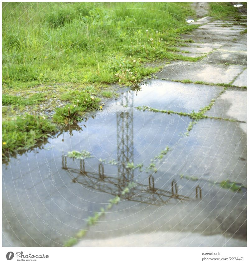 untitled 4 Energy industry Environment Water Grass Moss Deserted Concrete Steel Gloomy Colour photo Exterior shot Detail Day Electricity pylon Puddle