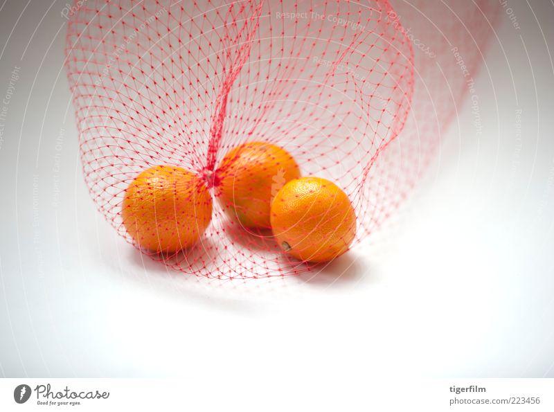 mandarin oranges Orange White Fruit Bag Plastic bag Nylon fishnet Net three 3 Food Snack still life Simple