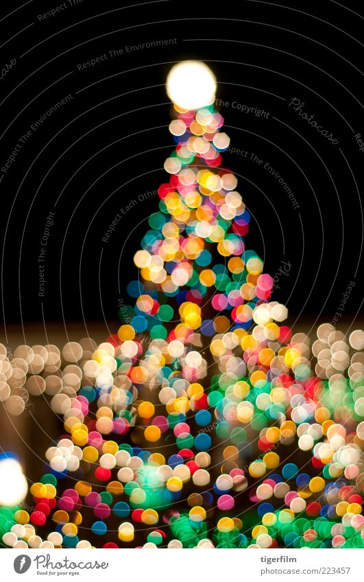 christmas tree in the night Christmas & Advent Tree Green Red Black Yellow Colour Lamp Dark Feasts & Celebrations Gold Christmas tree Decoration Night sky Point
