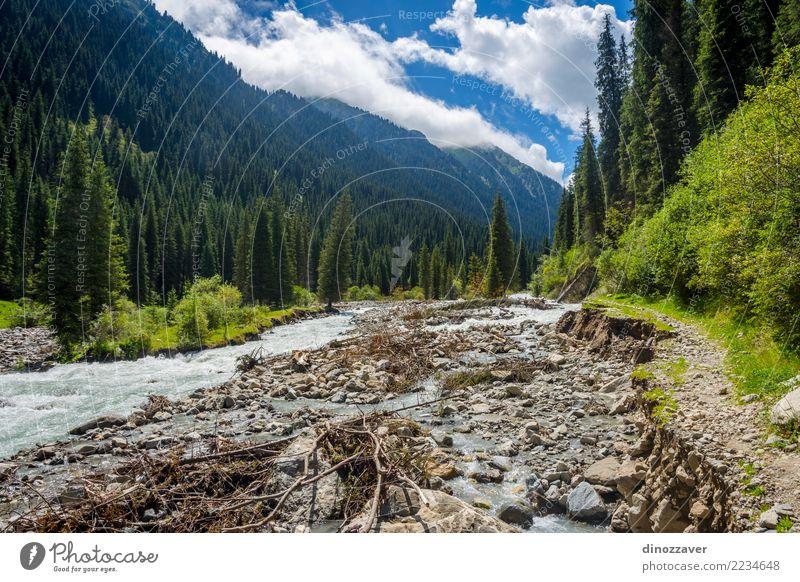 River in Karakol national park, Kyrgyzstan Summer Mountain Nature Landscape Sky Clouds Tree Grass Forest Hill Rock Canyon Transport Street Green Asia Flow