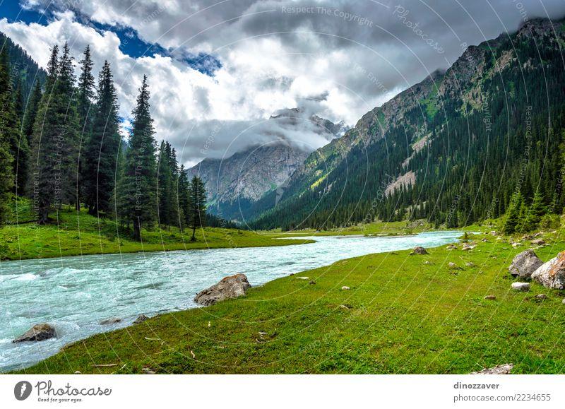 Stunning landscape of Karakol national park, Kyrgyzstan Summer Mountain Nature Landscape Sky Clouds Tree Grass Park Forest Hill Rock Canyon River Transport