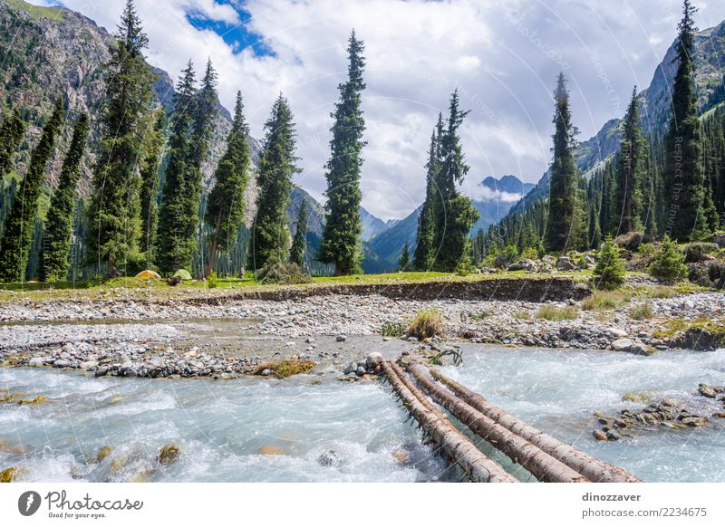 Bridge over the river in Karakol national park Summer Mountain Nature Landscape Clouds Tree Park Forest Hill Rock Canyon River Transport Street Wood Going Asia
