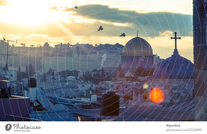 Good morning Jerusalem West Jerusalem Palestine Asia Town Downtown Old town Church Dome Manmade structures Roof Domed roof Tourist Attraction Landmark