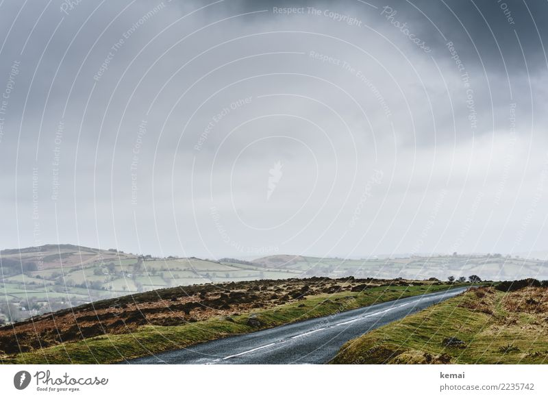 Road through the moor Calm Leisure and hobbies Vacation & Travel Trip Adventure Far-off places Freedom Environment Landscape Sky Clouds Autumn Weather