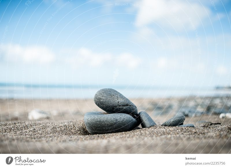 Small but big Harmonious Well-being Contentment Senses Relaxation Calm Vacation & Travel Trip Adventure Freedom Summer vacation Beach Ocean Environment Nature