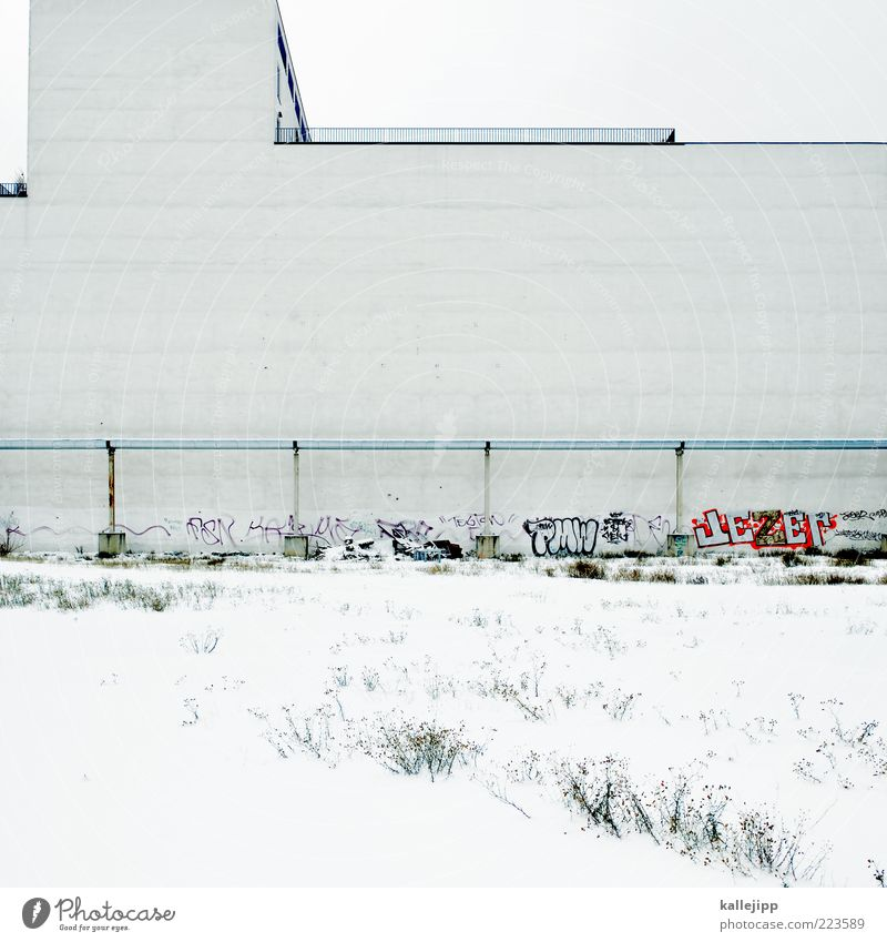 White Winter House (Residential Structure) Wall (building) Snow Graffiti Wall (barrier) Building Line Facade Bushes Handrail Pipeline Street art Daub Building lot