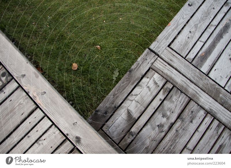 V Environment Grass Terrace Sharp-edged Green Wood Footbridge Lawn Geometry Line Chopping board Floor covering Meadow Copy Space Day Colour photo Subdued colour