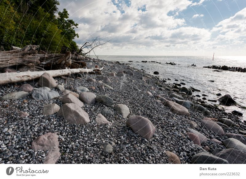 White pebbles Nature Landscape Water Clouds Summer Beautiful weather Coast Beach Baltic Sea Island Rügen Discover Exceptional Clean Gloomy Judicious Wisdom