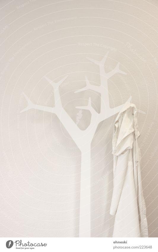 white Design Interior design Decoration Room Tree Clothing Hallstand Jacket White Arrangement Colorless Colour photo Subdued colour Interior shot Copy Space top