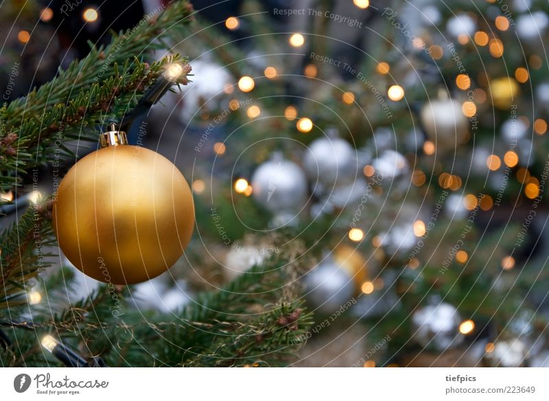Christmas & Advent Gold Happiness Candle Christmas tree Fir tree Silver Glitter Ball Safety (feeling of) Electric Christmas Fair Coniferous trees Spruce