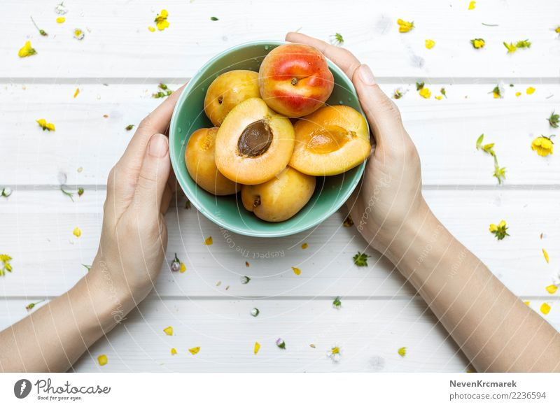 Female hands holding a bowl of apricots Food Fruit Candy Apricot Nutrition Eating Breakfast Lunch Dinner Picnic Organic produce Diet Bowl Pot Cup Mug Feeding